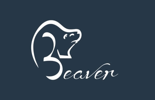 beaver gestor de processos